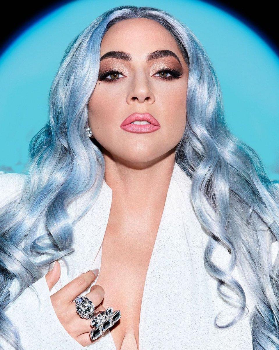 Lady Gaga nın köpekleri çalındı #4